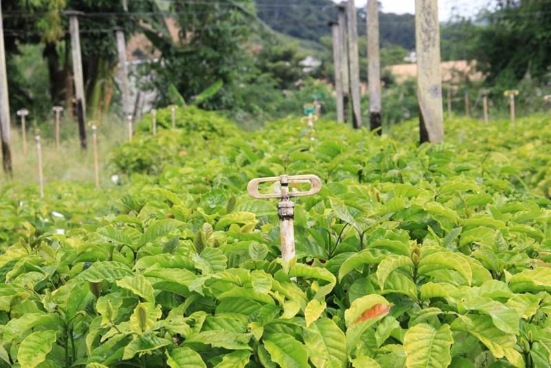 Agerh emite mais de 300 Outorgas para uso da água a produtores rurais da bacia hidrográfica do rio Itapemirim