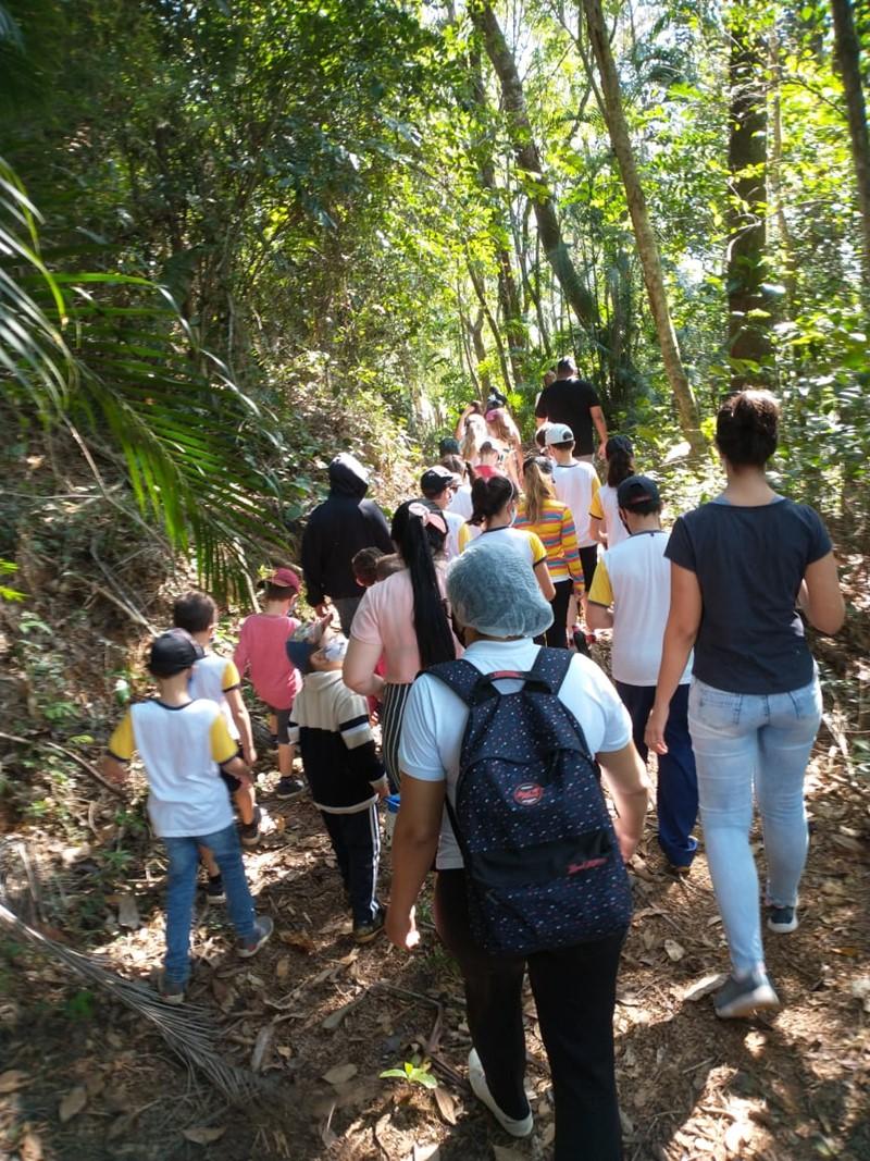 Escolas do entorno do Frade e a Freira realizam trilhas para comemorar Dia da Árvore