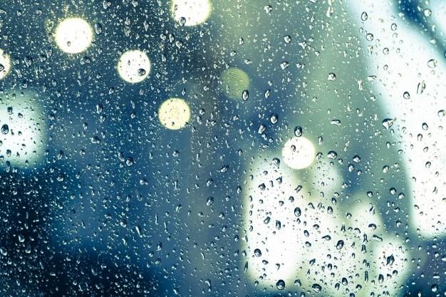 Chuvas e áreas alagadas aumentam o risco de transmissão da leptospirose 3